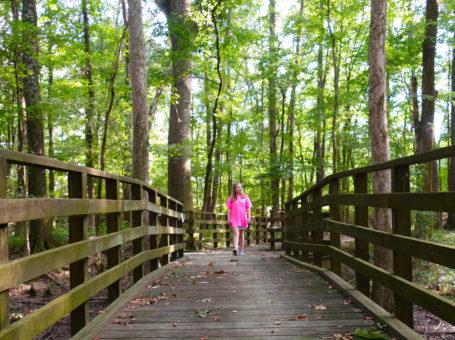 Haserway Wetland Nature Trail