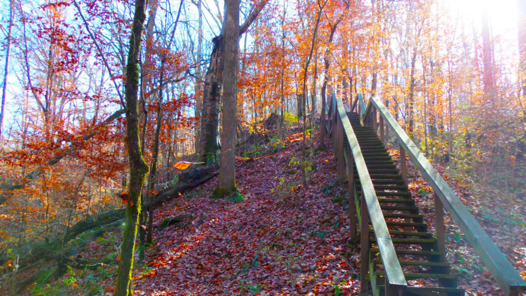 Lost Bluff Hiking Trail