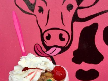 Yogurt Express